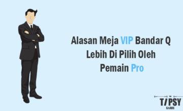 Alasan Meja VIP Bandar Q Lebih Di Pilih Oleh Pemain Pro